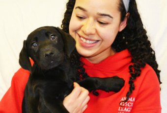 Careers in Animal Rescue