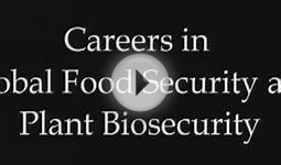 Careers in Global Food Security and Plant Biosecurity