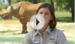 Tips For A Career With Animals | SeaWorld®